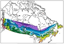hardiness Zone Canadian map