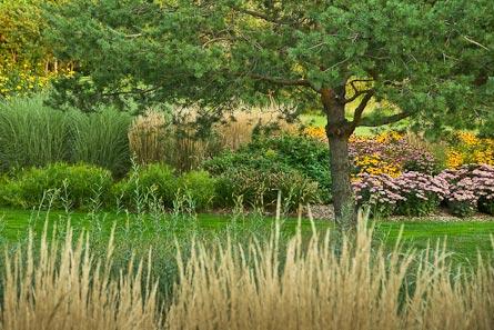 Cunnington garden
