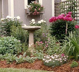 Mulch For Your Garden