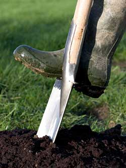 soil preparation for garden